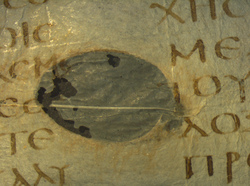 Scar tissue visible on the Codex Sinaiticus