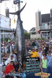 1062 lb Blue Marlin Ca...