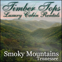 Celebrate Winterfest In The Great Smoky Mountains Timber