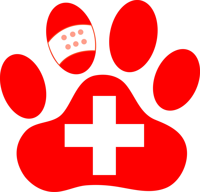 animal health care associates