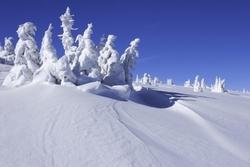 Cheap flights to East European ski hotspots