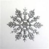 snowflake wedding theme