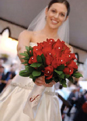 www.bridesign.com