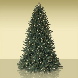 Qvc Christmas Trees.Balsam Hill Instant Evergreen Christmas Tree Debuts And
