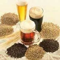 Beer Brewing Kit Recipes