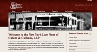 New York City Personal Injury Law Website