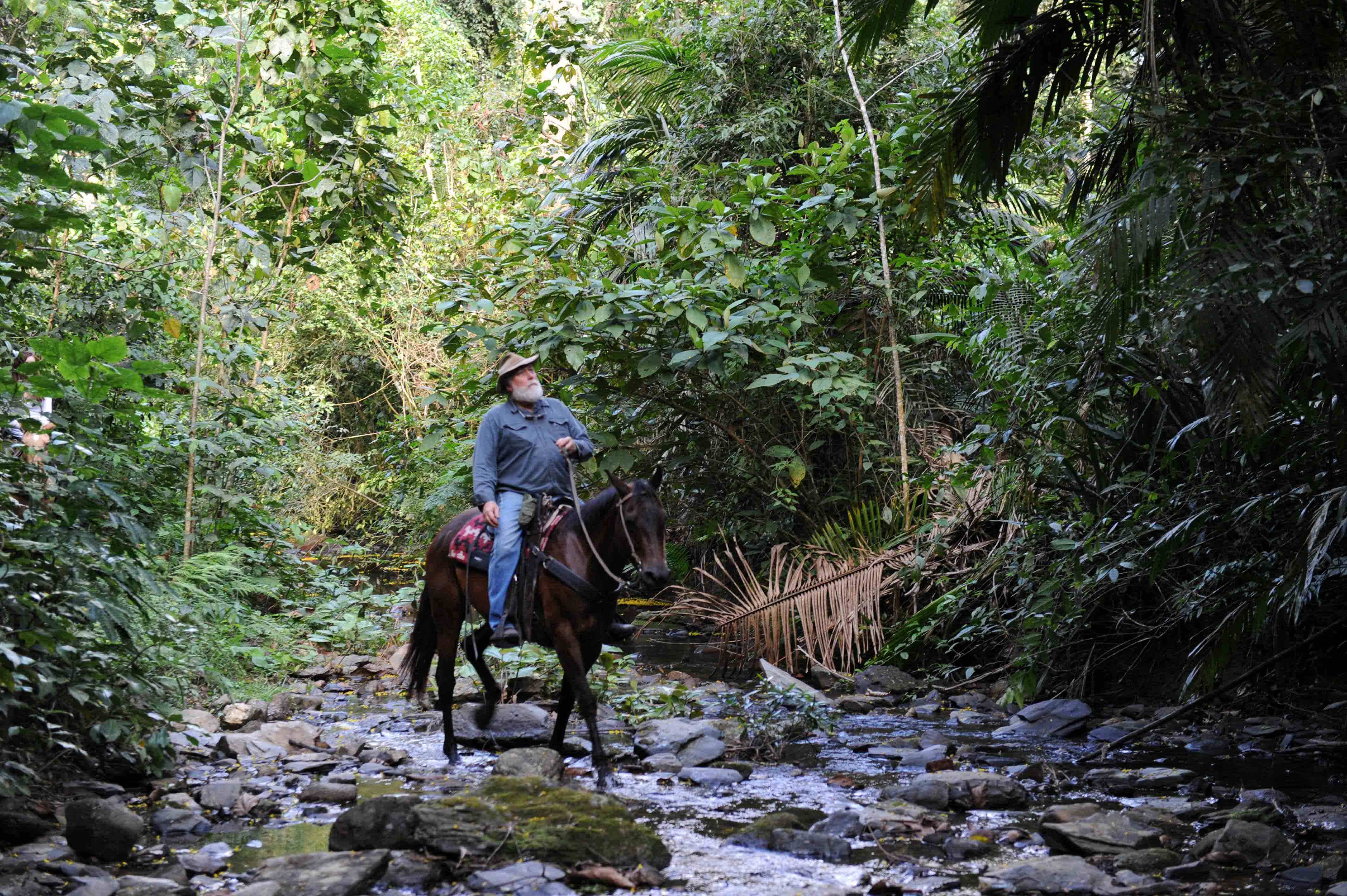Mountain Equestrian Trails In Belize Announces Their New
