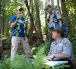 Invasive plant species cost the US economy more than $100 billion annually. SCA interns have been working with national parks and forests for two decades to protect native plant communities.