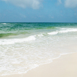 Perdido Key, FL - Beach Photo