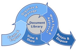 Document Management Lifecycle