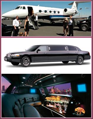 limo business plan pdf
