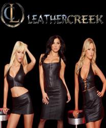 Tea Length Dress Women s Leather Dresses - Stylehive