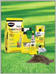 how to get rid of moles in yard 38882592 gophers and moles in the