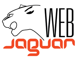 Your Business Powered by WebJaguar