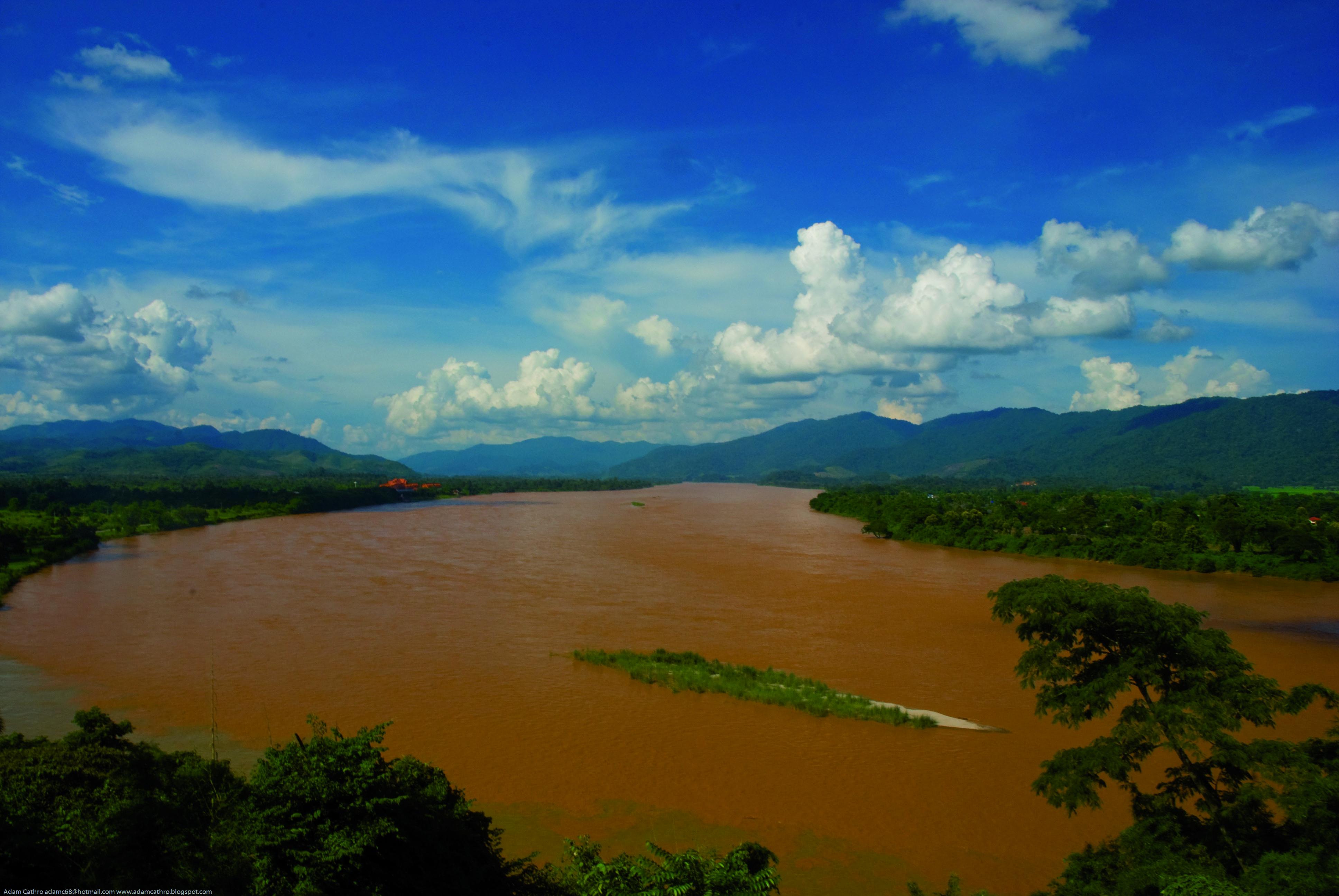 Mekong Dams Threaten Rare Giant Catfish