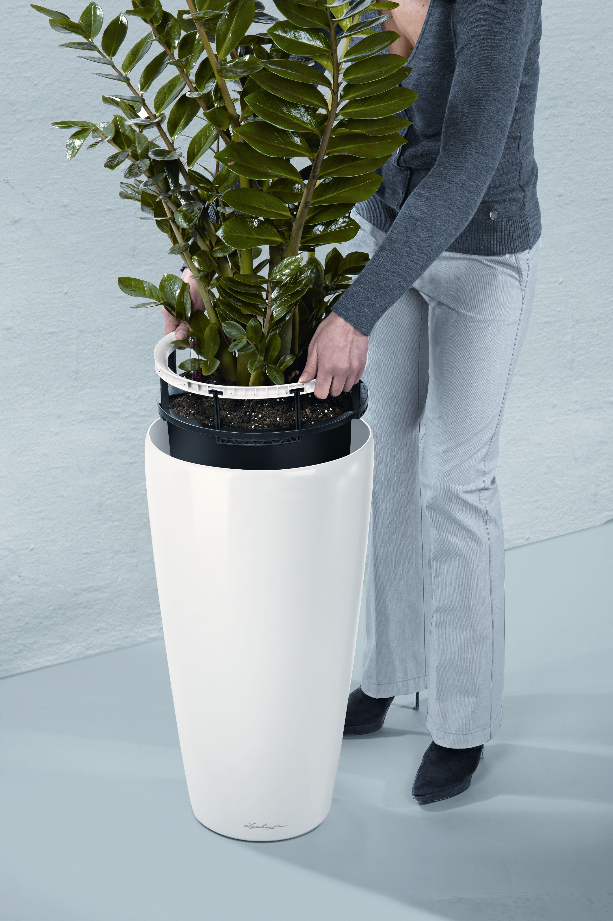 lechuza 39 s new rondo self watering planter makes bold. Black Bedroom Furniture Sets. Home Design Ideas