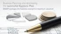 Professionally Written Business Plans