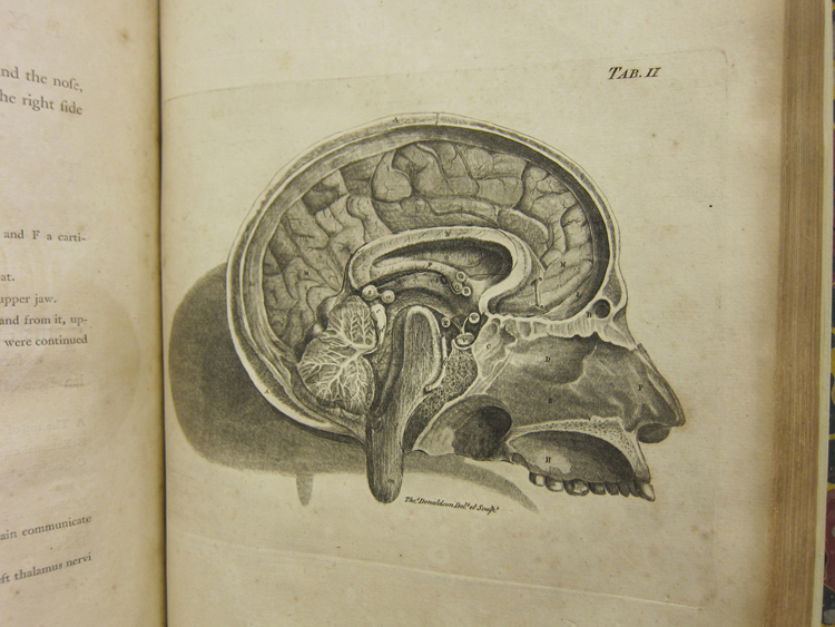 history of neuroscience Why should soft file as this the history of neuroscience in autobiography vol 4 1st edition, many people also will need to buy the book sooner.