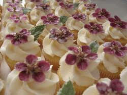 organically grown, candied, edible flowers for holiday cake decorating; healthier choice