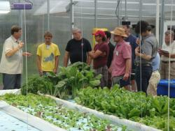 Aquaponics workshop attendees at Nelson and Pade, Inc.'s aquaponics greenhosue.