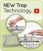 how to set an old havahart trap