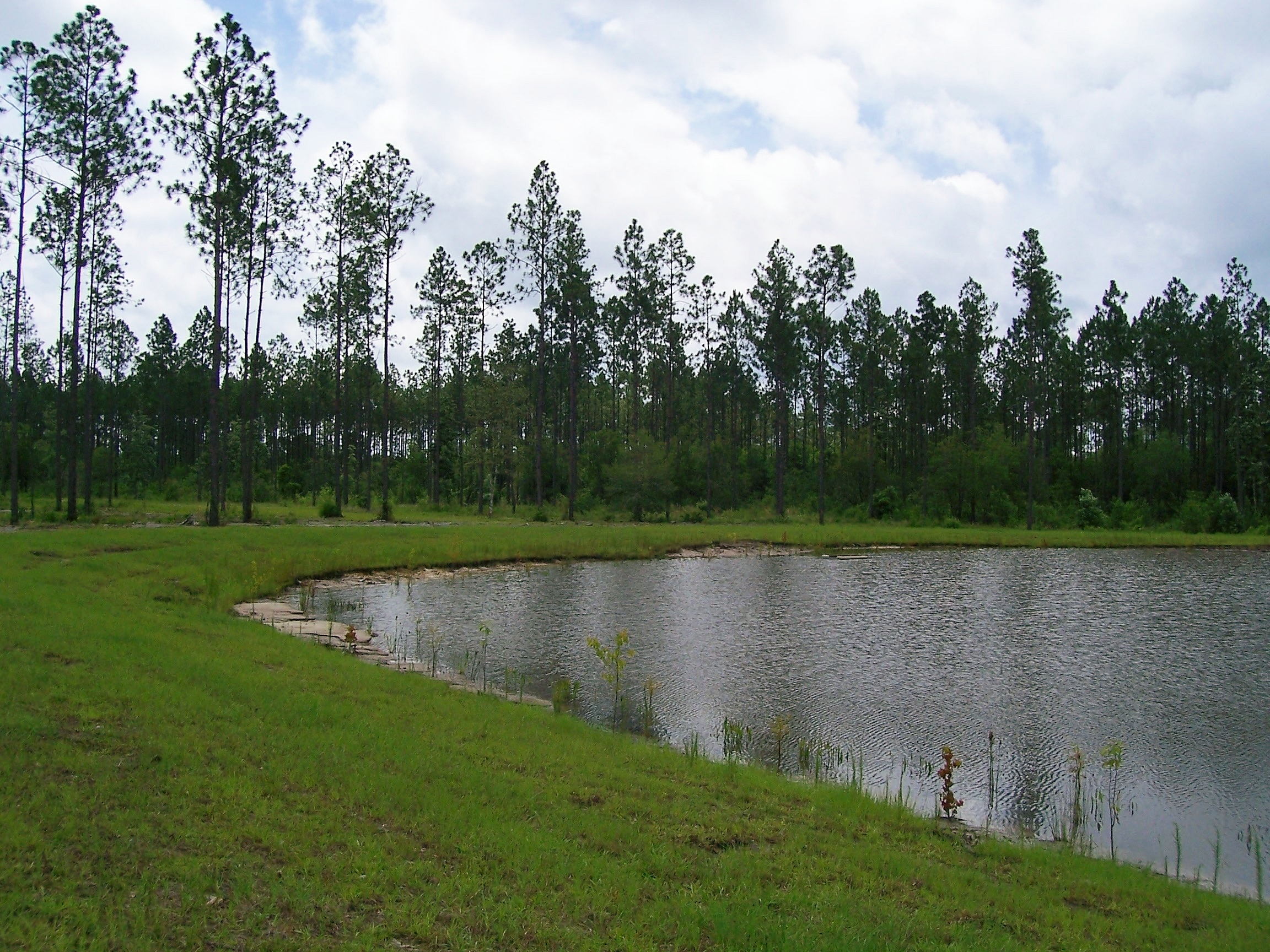 North georgia outfitters of dawsonville georgia is for Private fishing lakes