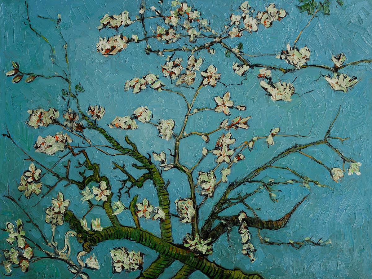 Poppy Flower Painting Vincent Van Gogh 5108587 Sciencemadesimplefo