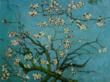 Van Gogh's Branches of an Almond Tree oil painting
