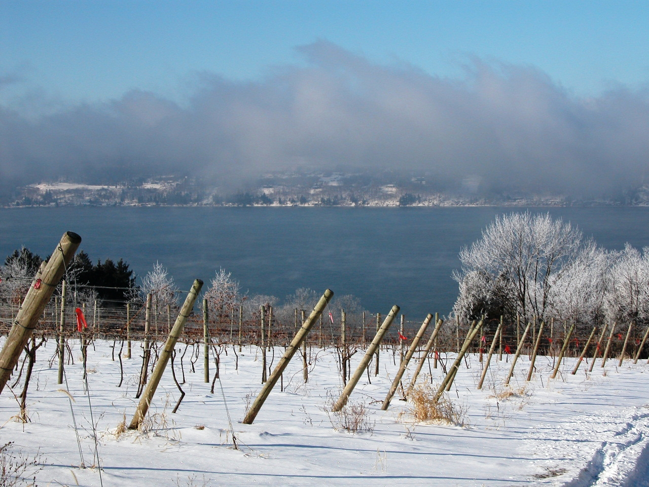 winter wine weekends return to finger lakes wine country