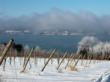 Winter Vineyards in Finger Lakes Wine Country, New York