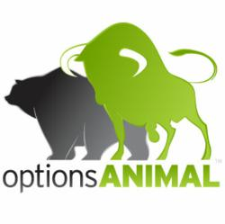 OptionsAnimal Investment Education