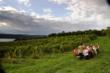 Escape in every sense to Finger Lakes Wine Country