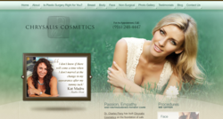 plastic surgery surgeon sacramento ca marketing website design