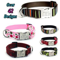 Unique Dog Collars by Flying Dog