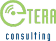 eTERA Consulting Honored as 2013 Helios Apollo Awards Finalist