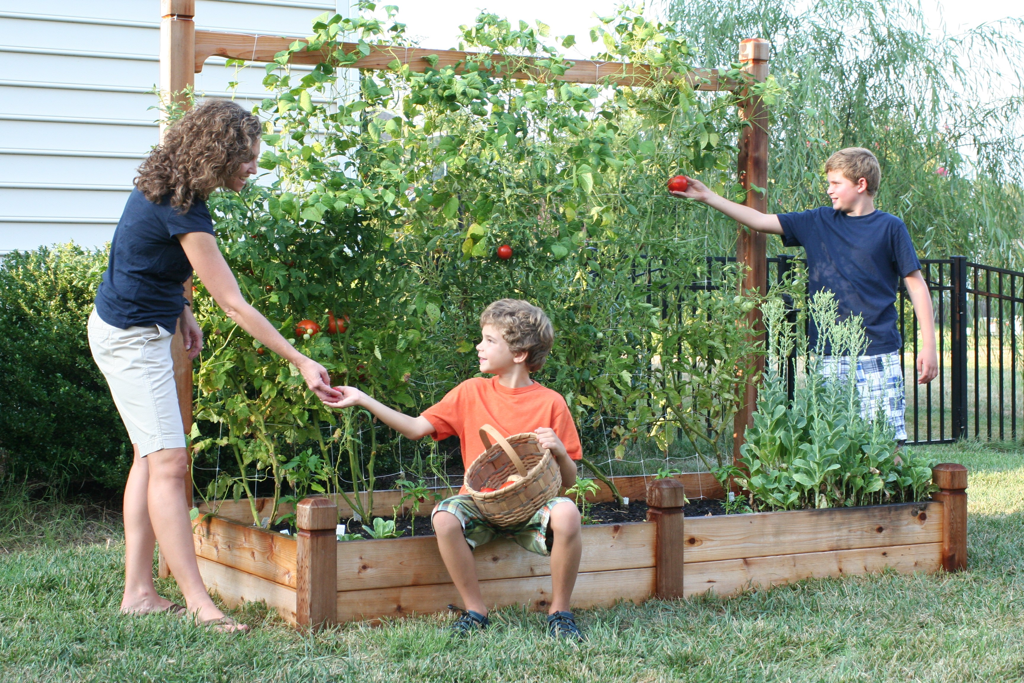 Backyard Vegetable Farming : Backyard Farmers offers a wide variety of complete systems for growing