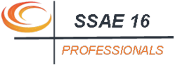 SSAE 16 Professionals - Delivering SSAE 16 Type I and SSAE 16 Type II Reports