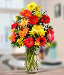 daFlores.com - International Flower Delivery