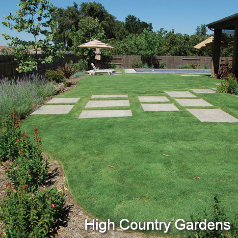 High Country Gardens Forms Partnership With
