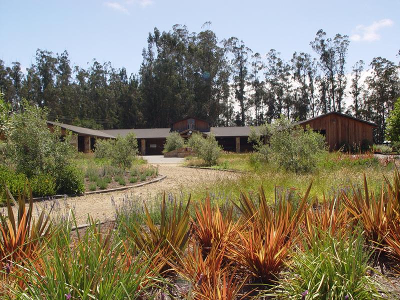 San francisco bay area equestrian facility designers say for Bay area landscape design
