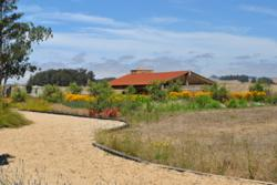 landscape architect bay area