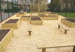 Childrens Play Environment