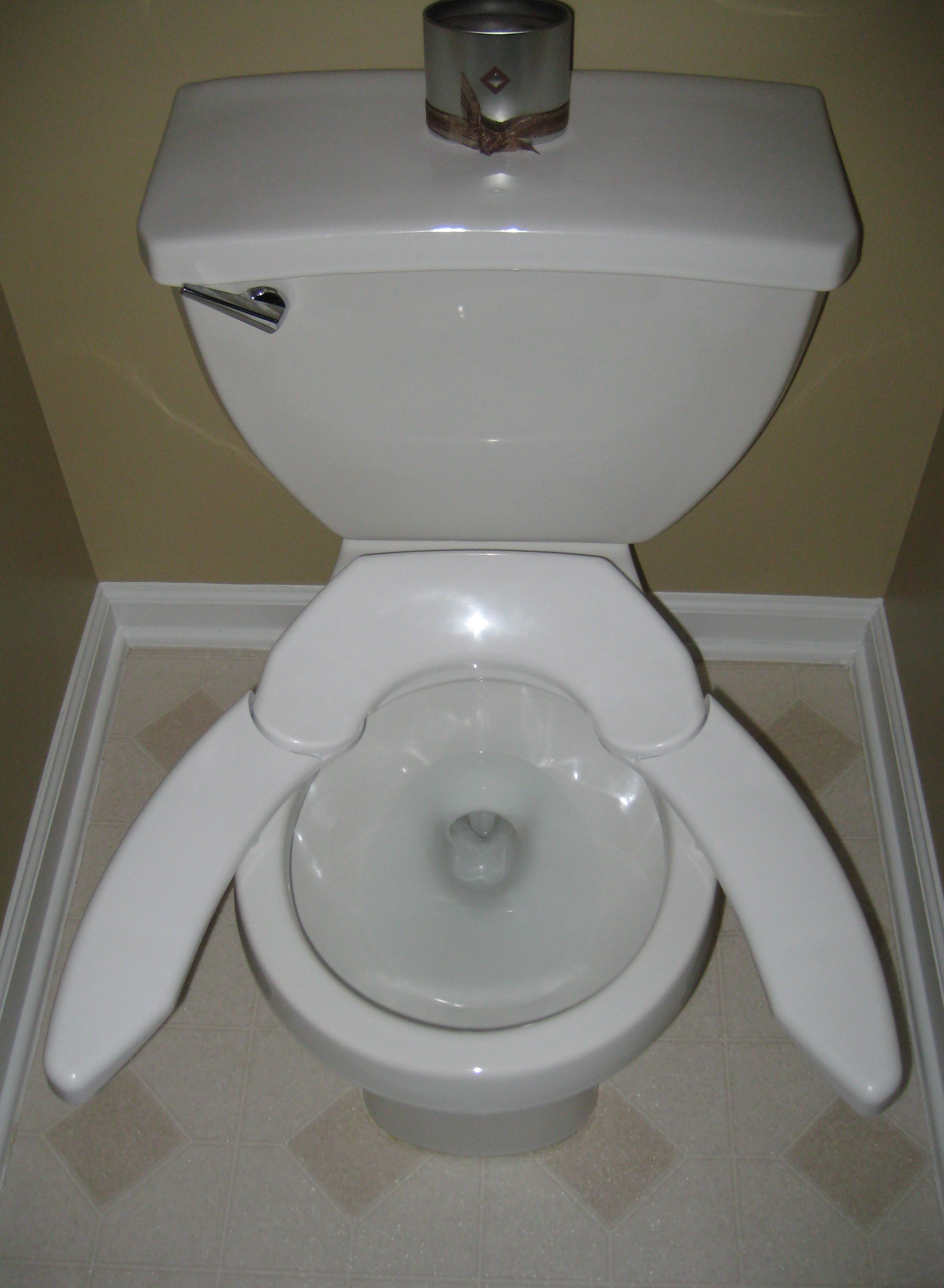 Round Vs Elongated Toilet Bowls Designs