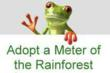 "Cuipo Rainforest Preservation Initiative Announces Partnership with UC Berkley's Carbon Footprint Calculator Expanding the ""Adopt a Meter of the Rainforest"" Program"