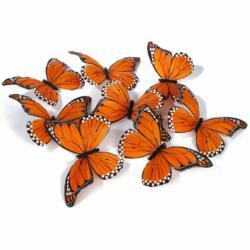 World Buyers Monarch Butterfly Garlands JL043