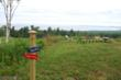 The View of Lake Michigan atop Chimney Corners Resort Nature Preserve