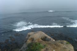 Small 1 Foot Tsunami Wave Hits San Diego Coast at 8:45am, March 11, 2011