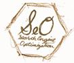 http://viastudio.com/services/marketing/search-engine-optimization/