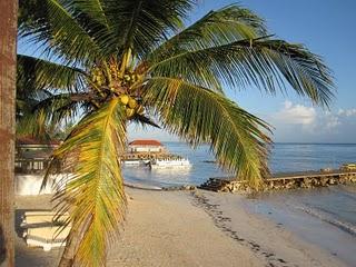 Caribbean Hideaways Inc.: N-Resort Spooktacular Nude