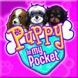 Puppy In My Pocket, Fashion Puppies, Fashion Academy